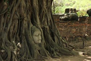 Image of Wat Phra Mahathat near Phra Nakhon Si Ayutthaya. canon eosm efm1855mmisstm