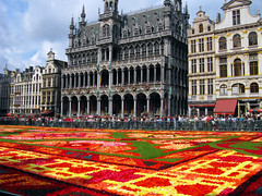 2014 Brussels flower carpet