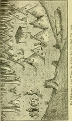 """Image from page 37 of """"The life and practice of the wild and modern Indian; the early days of Oklahoma, some thrilling experiences"""" (1922)"""
