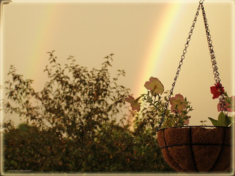 ~ double rainbow...