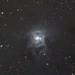 NGC 7023 - The Iris Nebula by John.R.Taylor (www.cloudedout.squarespace.com)
