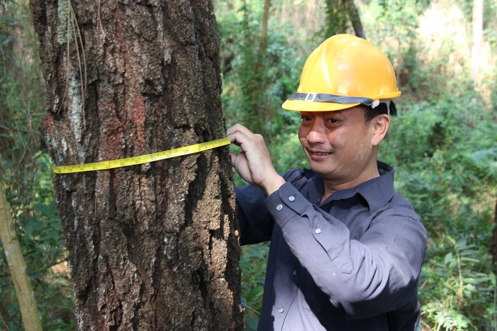 Vietnam_metsähanke