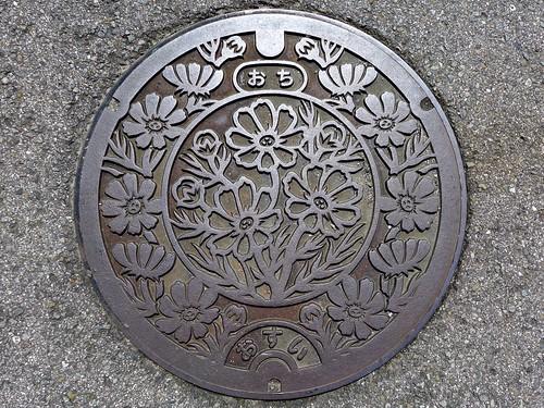 flower japan 日本 manhole 花 cosmos kochi ochi コスモス マンホール 高知県 越智町