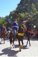 Desfile: 7 de setembro Januária-MG 2014