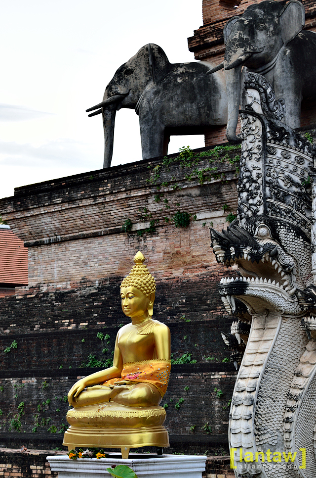 Chedi Luang Buddha and Elephant