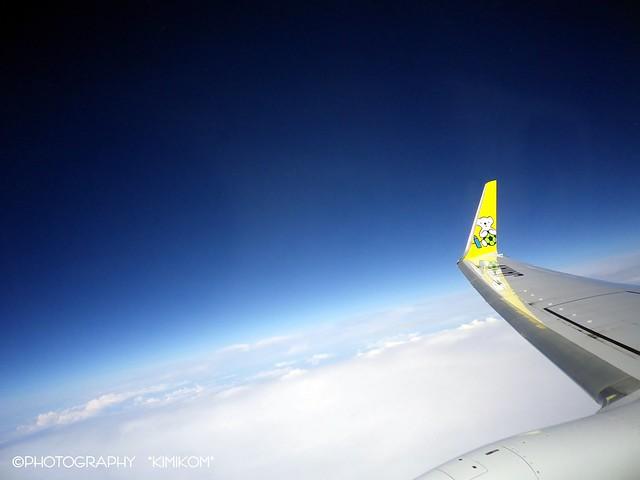 道民の翼 AIR DO 翼の内側に『ベア・ドゥ』