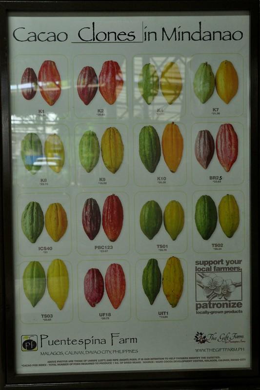 Davao Cacao