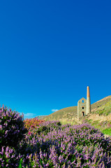 Walking near St Agnes - Towanroath shaft, Wheal Coates, St Agnes, Cornwall (2 of 3)