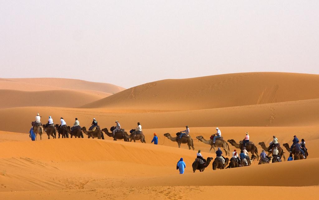 Camel trek2