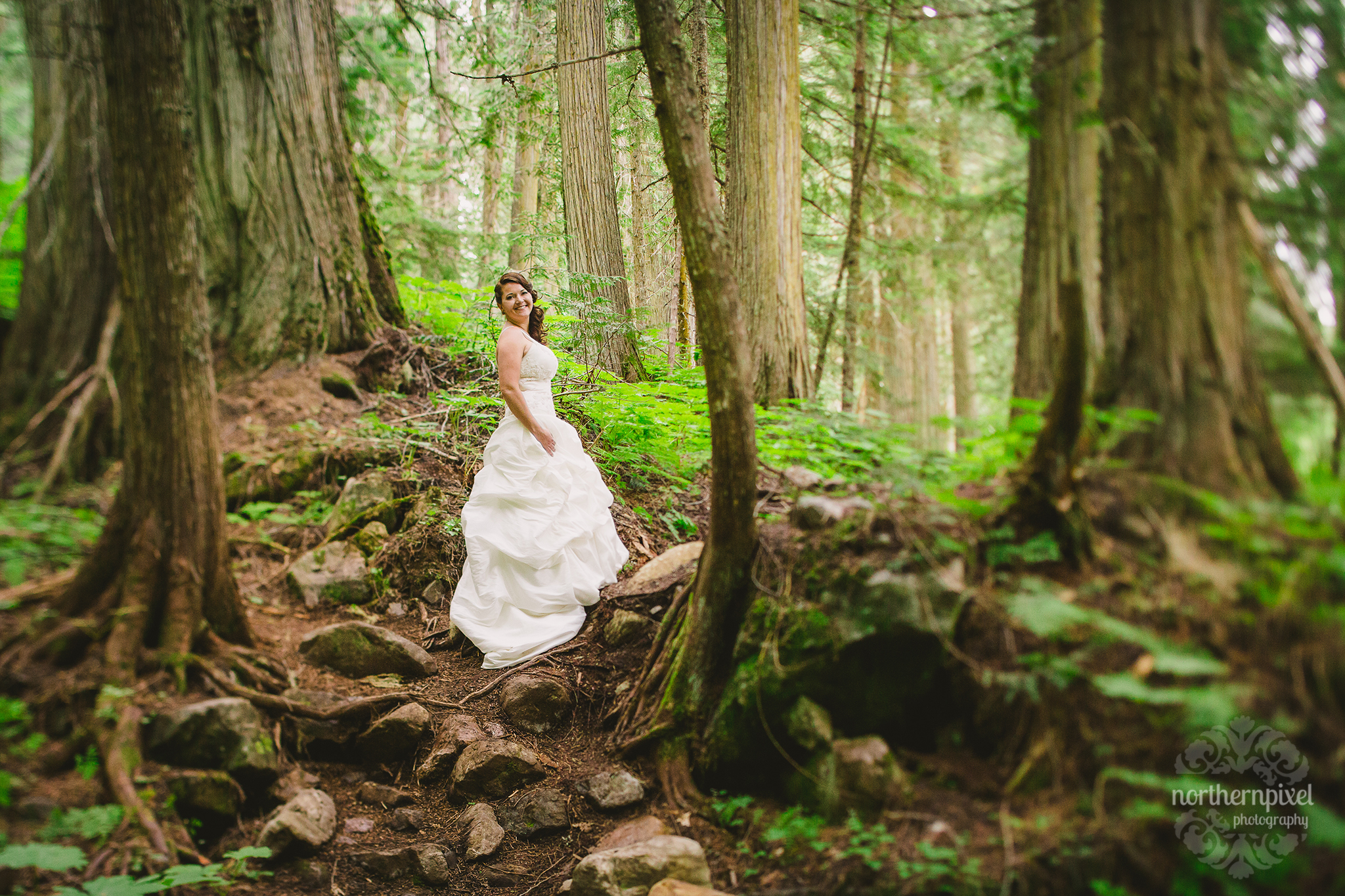 Andrea - Ancient Forest Wedding Session