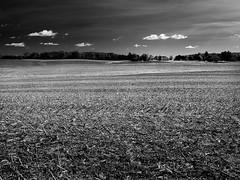 landscape_A280037-Edit