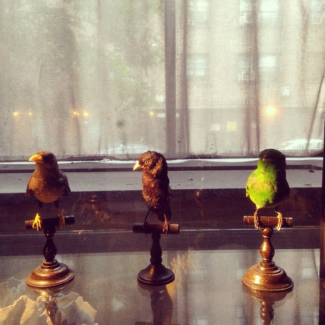 I'm at Buddakan. The birds are watching me eat.