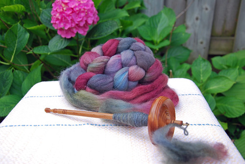 Tabachek cedar drop spindle with Sheepspot organic dyed Polwarth fibre