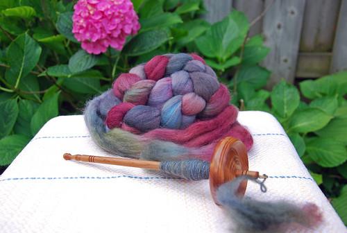Tabachek cedar drop spindle with Sheepspot organic dyed Polwarth fibre