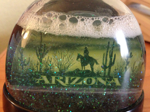 Arizona snow globe