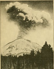 """Image from page 56 of """"Glimpses of our national parks"""" (1920)"""