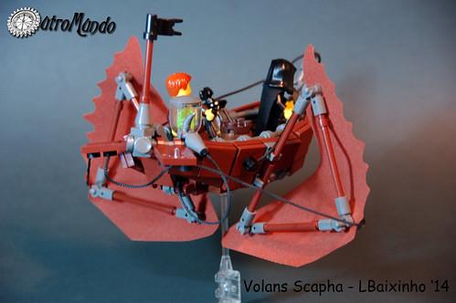 Volans Scapha (5)