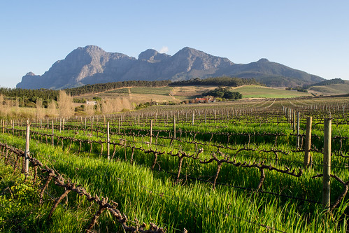 southafrica westerncape paarl