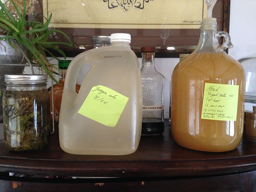 Top Summer Ferments by mikey and wendy