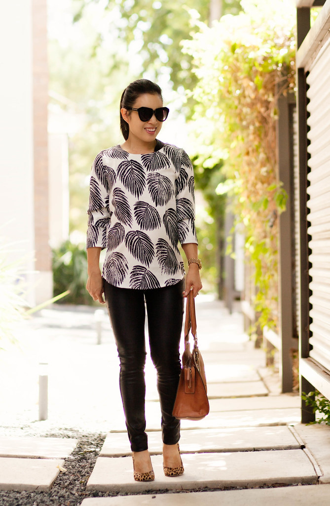 cute & little blog | maternity bump pregnancy style | petite fashion blog | black white leaves blouse, leather ponte pants, leopard pumps | 19 weeks