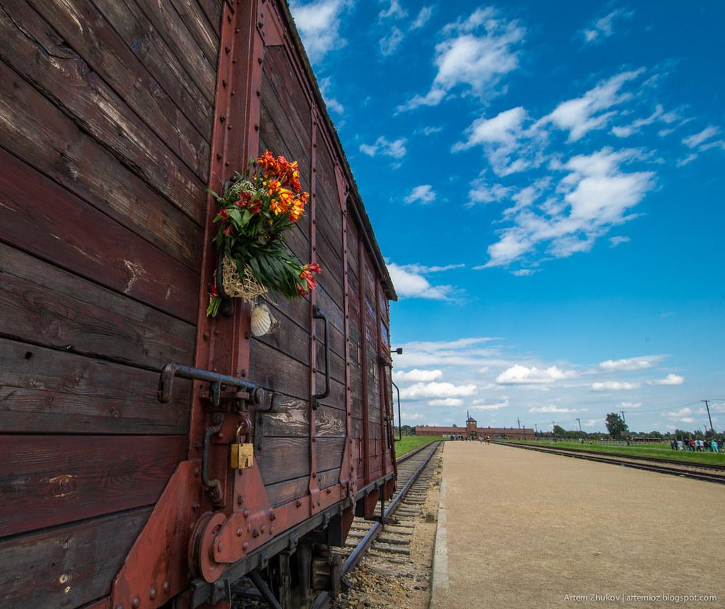 Auschwitz II–Birkenau-4.jpg
