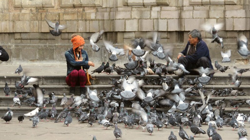 Feeding the pigeons at the San Francisco Cathedral in Lima, Peru