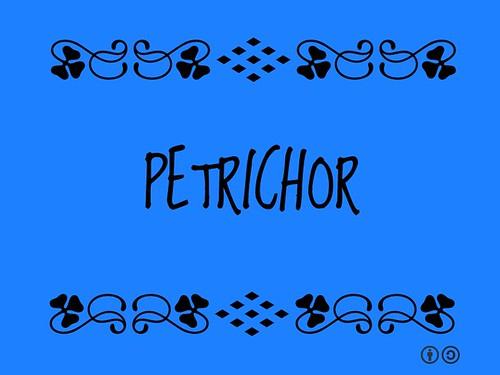 Buzzword Bingo: Petrichor