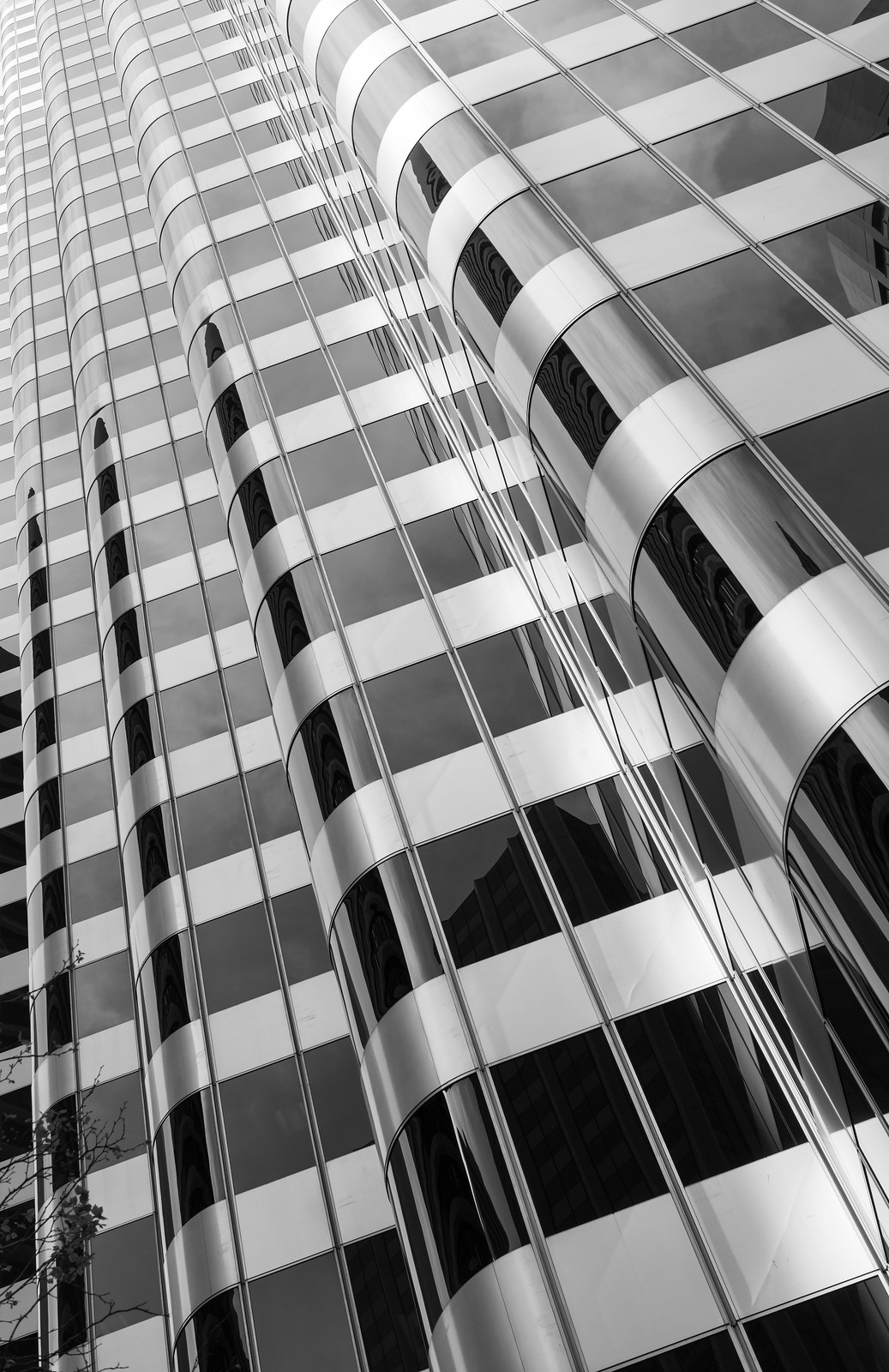 Vertical Lines I