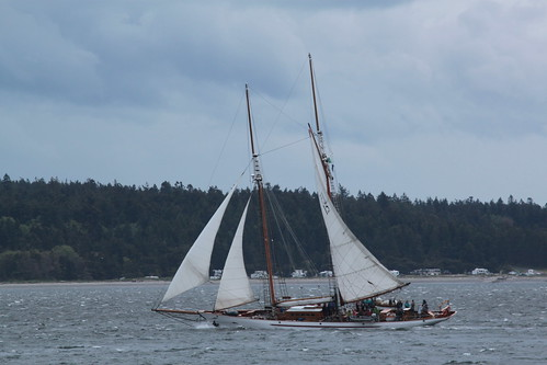 IMG_0317 - Port Townsend WA - Schooner ADVENTURESS on opening day May 3rd, 2014