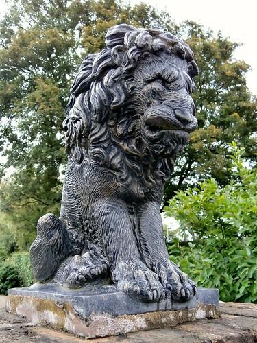 Lion, a grumpy gatepost guardian