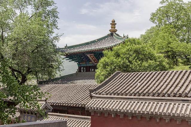 少林寺 (47)