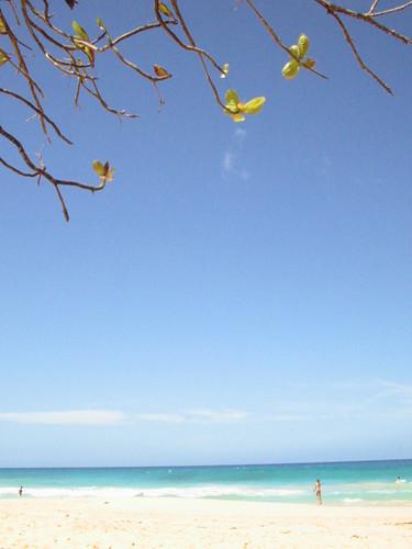 République Dominicaine - fév 2004 072