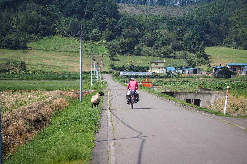 Haidee meets the locals near Honbetsu, Hokkaido, Japan