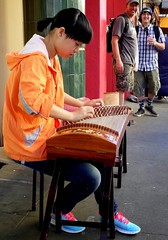 plucked string instruments, musician, folk instrument, guzheng, sitting, string instrument,
