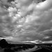 Small photo of Alturas Sky