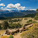 Rocky Mtn Nat. Pk, CO. View ( Wow! ) by fulcosfotos