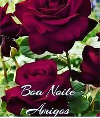 #blogauroradecinemadeseja  #goodnigh#buenasnoches:heart: t #buenanotte:kiss::kiss::two_hearts::heart:#cool:sunglasses:  #bonnenuit:zzz: #bonnuit:moon: