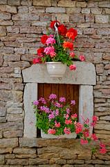 Fleurs/Pierre - Photo of Cussey-les-Forges