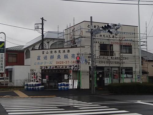 氷見漁港 - naniyuutorimannen - 您说什么!