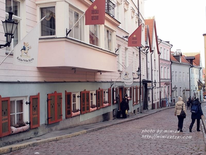愛沙尼亞 塔林 旅遊 (40)