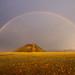 Rainbow in the Desert by MrBlackSun