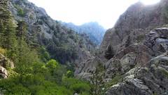 Arrivée au ruisseau de Vetta di Muru