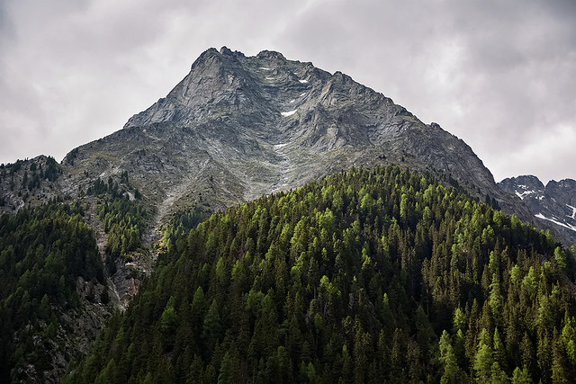 Near Antholzer See in South Tyrol, Italy.