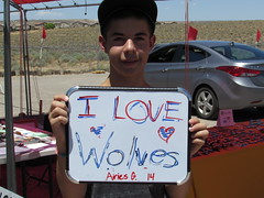 Kids Love Wolves