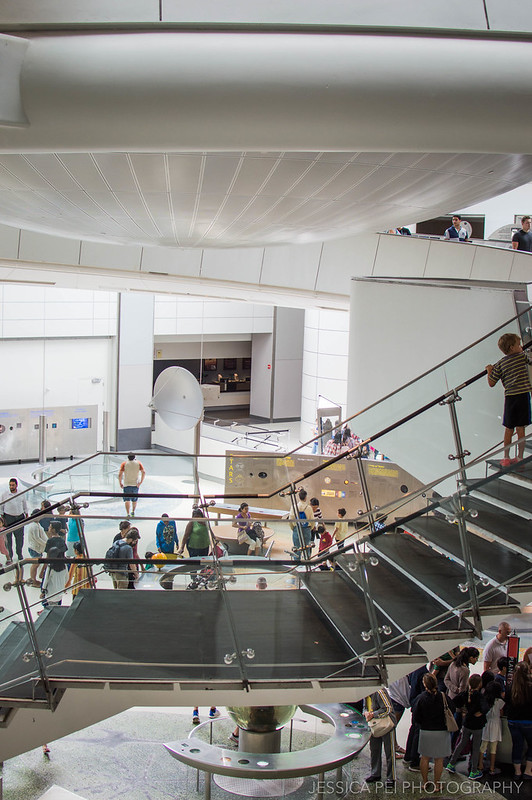 american museum natural history