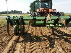 agriculture, farm, field, soil, vehicle, plough, agricultural machinery, land vehicle, tractor,