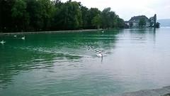 Seewalchen-Attersee lake