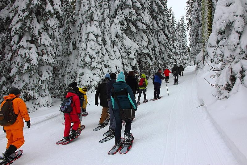IMG_8346 Ranger-Led Snowshoe Walk