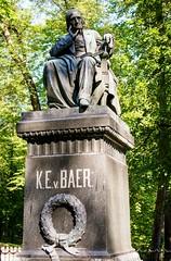 DSC0222 Karl Ernst von Baer Monument 670x1020
