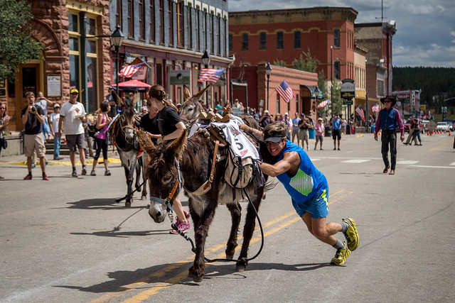 2014 Leadville Burro Race